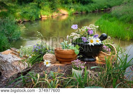 Mortar Of Medicinal Herbs, Wooden Bowl And Basket Of Healing Plants, Bunch Of Medicinal Herbs On A W
