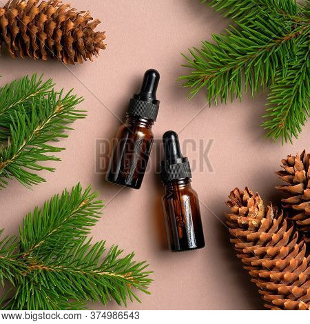Brown Glass Dropper Bottles Mockup With Pine Tree Branches And Cones. Natural Organic Cosmetics, Con