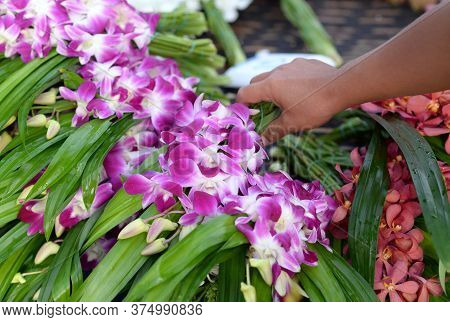 A Woman's Hand Holding A Bouquet Of Fresh Pink And White Orchid Flowers
