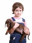 Little girl with dachshund puppy on white ground poster