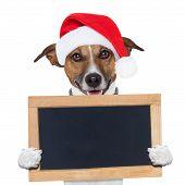 christmas banner placeholder dog wood board holding poster