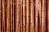 brown bamboo background a detail of a garden screen poster