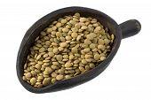 Scoop Of Green  Lentils