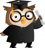 Illustration of an Owl Wearing a Toga and Graduation Cap Holding a Diploma poster