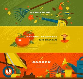 Stock Vector Illustration Of Gardening Hobby Banner Set With Tools And Vegetables. Design In Flat St