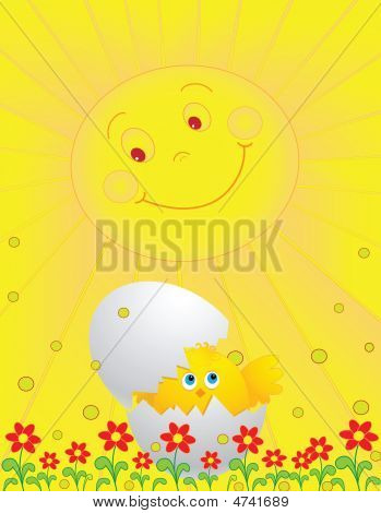 The Sun And A Chicken