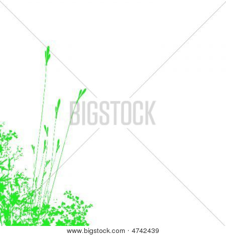 Green Foliage Background