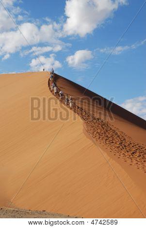 Dune Klettern