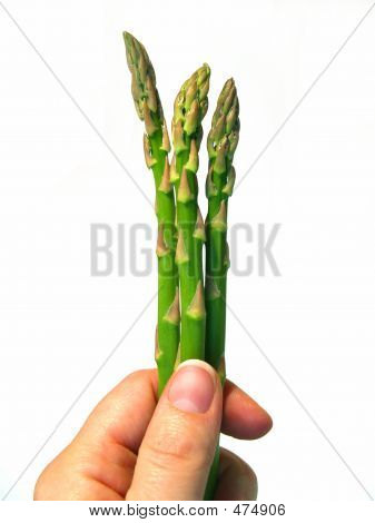 Asparagus Spears In Hand