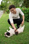 Vertical shot of a young man playing with his French bulldog cuddling on the lawn poster