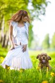 Young woman with cocker spaniel dog in a park. Focus on woman. poster