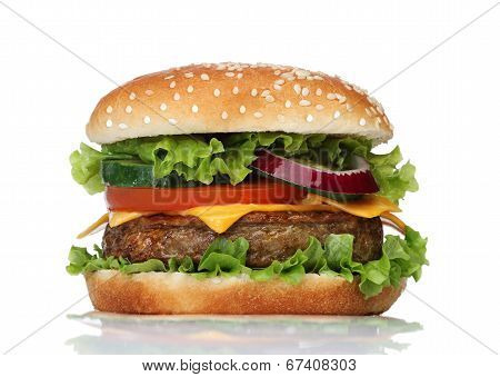 Tasty hamburger isolated on white