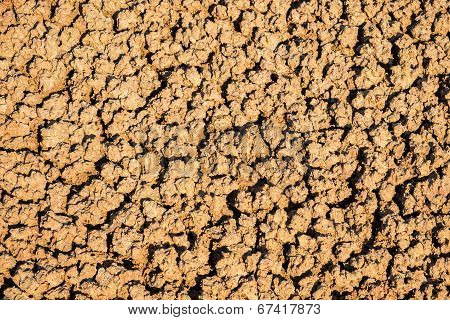 Close Up Orange Clay In Painted Hills
