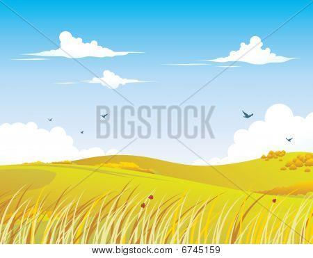 Nature Background - Autumn