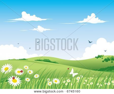 Nature Background - Spring