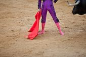 A barefoot bullfighter waits the bull with the capote during a bullfight poster