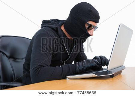 Burglar in sunglasses using laptop on white background
