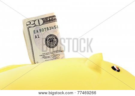 Yellow piggy bank with 20 dollars bills deposit