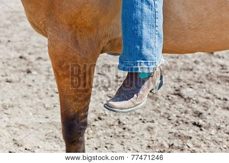 Close Up Of A Leg And Horse