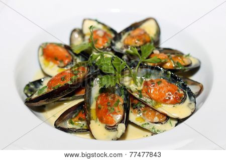 Closeup scene with clams on white plate
