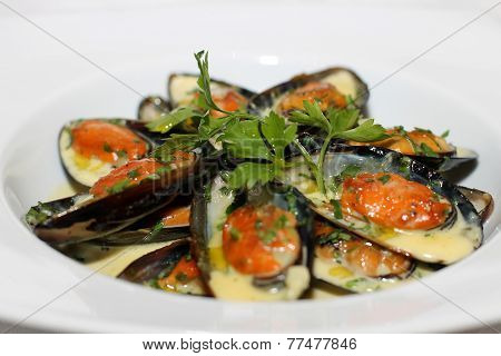 Tasty clams on white plate