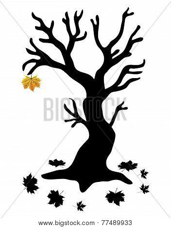 Autumn Tree - Stock Illustration