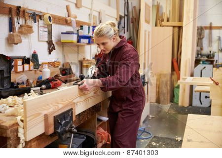 Female Apprentice Planing Wood In Carpentry Workshop