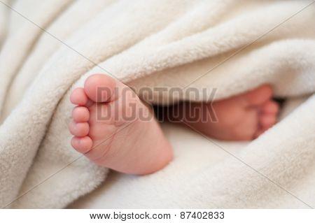Feet Of A Sleeping Child