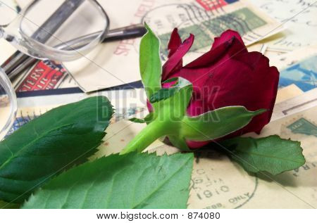 Red Rose And Letters