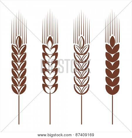 Wheat ear icon set. Vector illustration.