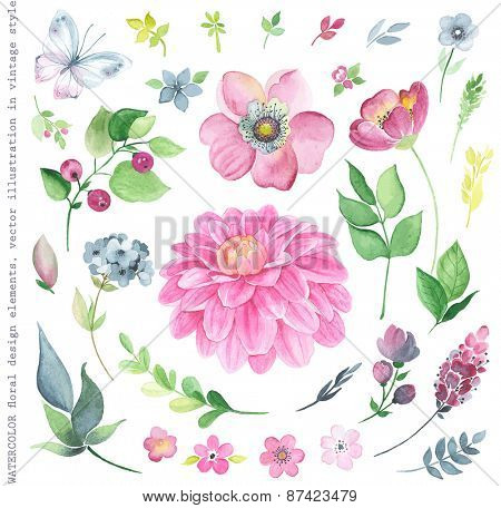 Collection of watercolor floral design elements in vintage style.