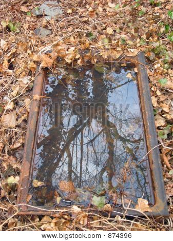 a reflection in water of almost bare trees framed by rusted metal surrounded by dry autumn leaves. poster