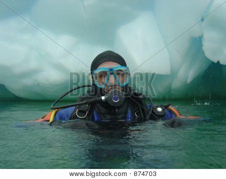 Diving In Antarctica