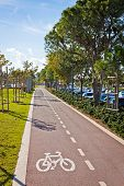 Cycle lanes at the Molos park in Limassol city Cyprus poster