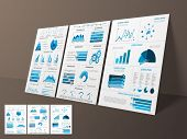 Business Infographic template layout with statistical bars, graphs and pie chart for corporate sector. poster