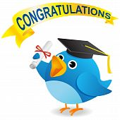 Blue bird graduate wearing graduation cap with a certificate poster