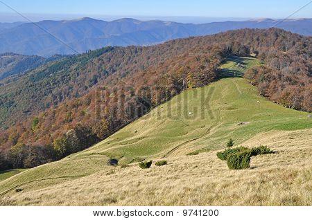 Autumn hillsides.