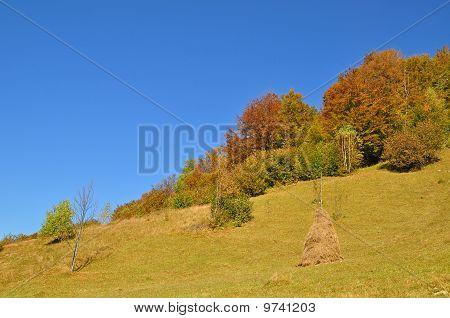 Haystack on an autumn hillside.