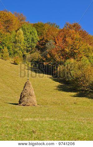 Haystack on an autumn hillside