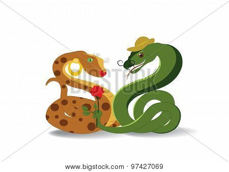 Snakes And Flower