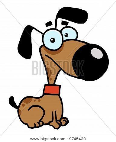 Dog Cartoon Charactrer