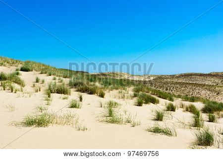 Dunes on the Curonian Spit near Nida, Lithuania