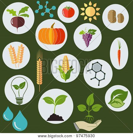 Agronomic  icons flat style - vector
