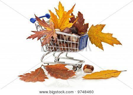 Compras de otoño