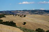 Lonely chapel surrounded by fields in Valley Orcia Tuscany Italy poster