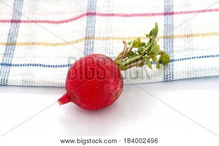 Spring Vegetables, Fresh, Radish,