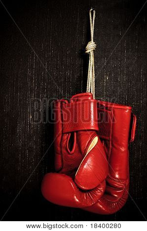 boxing-glove hanging