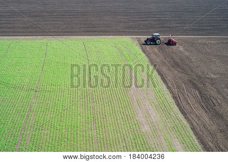 Tractor Sows On The Field