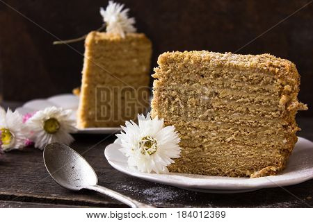 honey cake. Two pieces of cake in a blackberry on a dark background