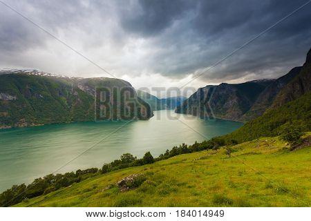 Aurland Fjord From Stegastein View Point, Norway